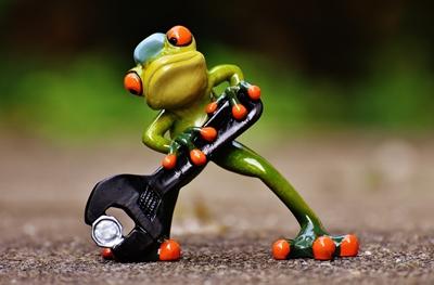 frog-400x263